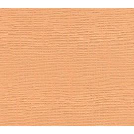 Paquete de cartulinas Peach Bellini de Tim Holz