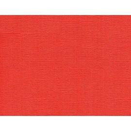 Paquete de cartulinas Red Peper de Tim Holz