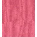 "Paquete de Worn Lipstick de Tim Holz, 12x12"""