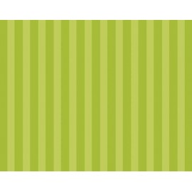 """Cartulina Estampada """"Lime Stripe"""" tamaño 22x28"""""""