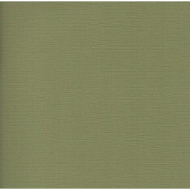 Paquete cartulinas Kale de American Crafts