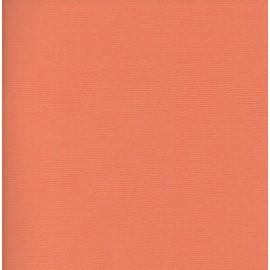 Paquete cartulinas Goldfish de American Crafts