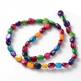 Cuenta de Concha en colores variados