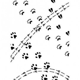 "Folder embosador ""Animal Track Pattern"""